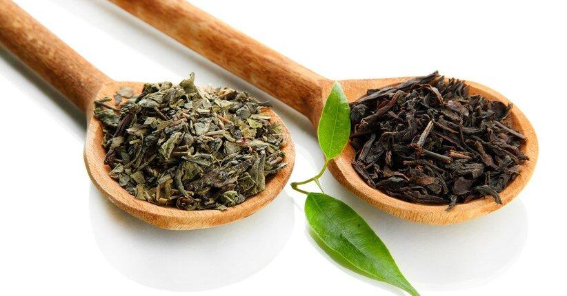 Che differenza c'è tra il tè nero e il tè verde?