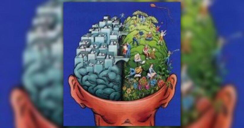 Come il cervello percepisce lo spazio