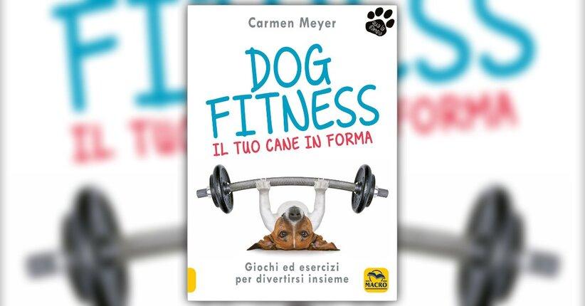 """Come praticare gli esercizi - Estratto da """"Dog Fitness"""""""