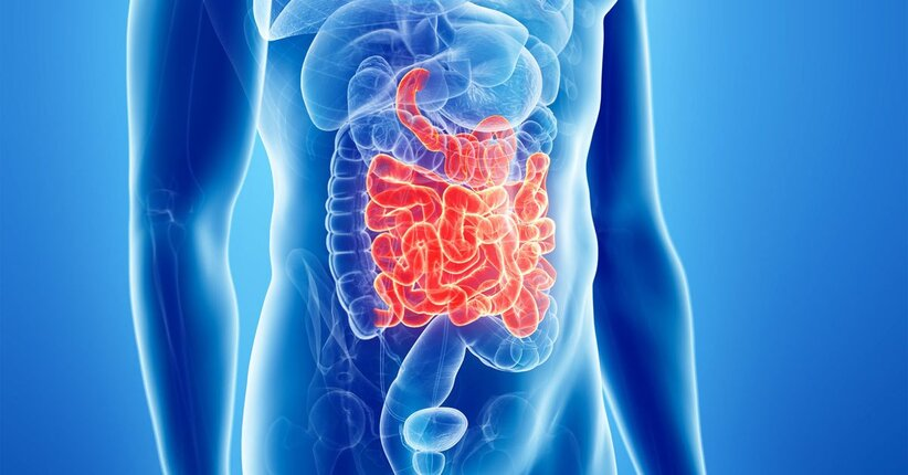 Come ripulire l'intestino naturalmente