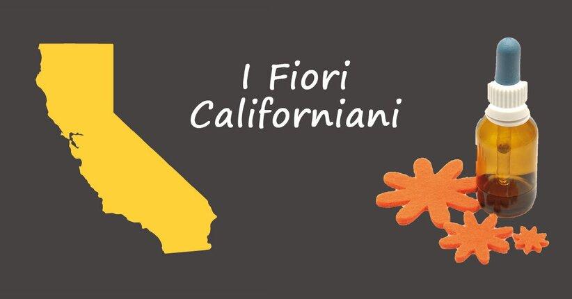 Conosci i fiori californiani?