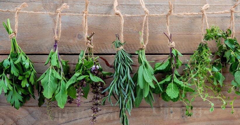 Crudo & Facile: Erbe aromatiche, aromi e nutrienti