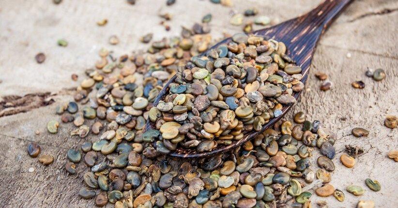 Crudo & Facile: I mille usi dei semi di canapa
