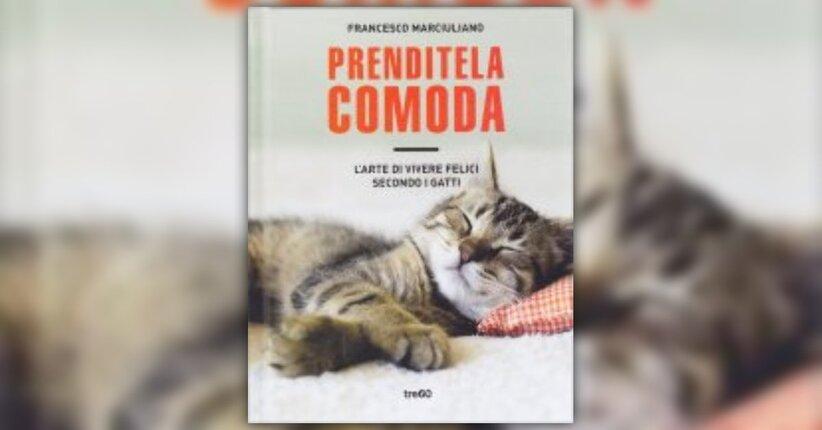 """Date ascolto ai gatti - Estratto dal libro """"Prenditela comoda"""""""