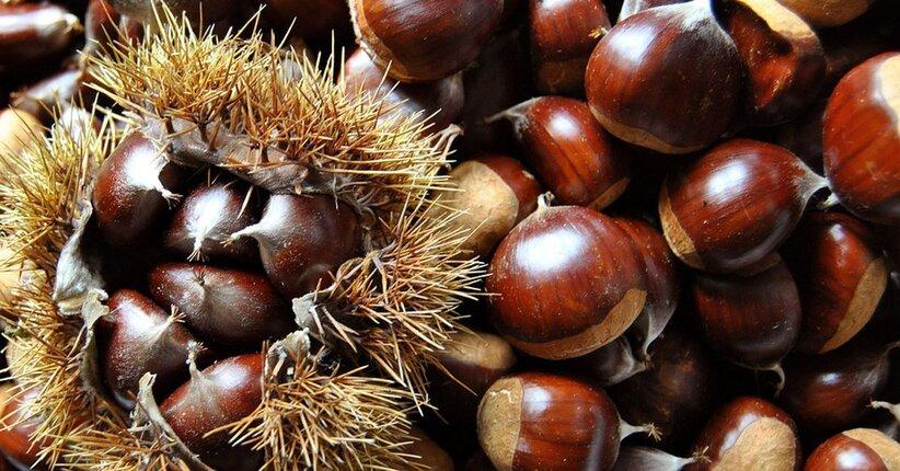 Fiori di Bach: Sweet Chestnut