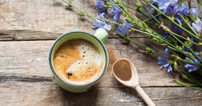 Focus sul caffè di cicoria