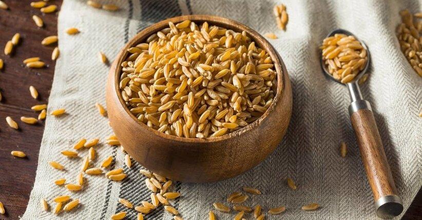 Grano Khorasan: che tipo di cereale è?