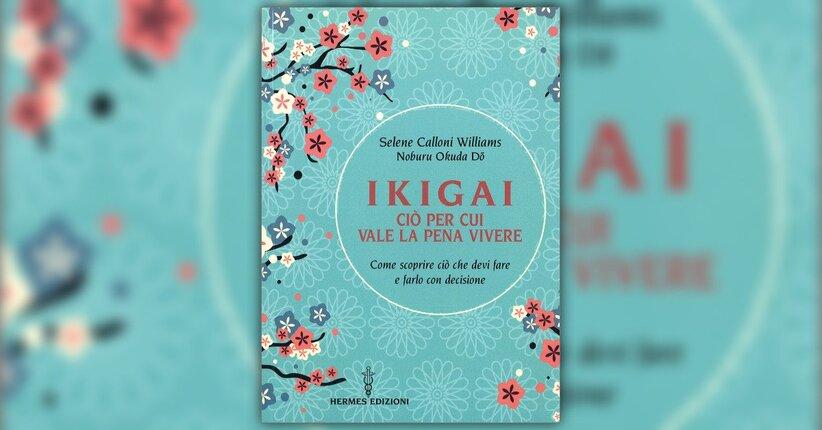 I 2 Flow dell'Ikigai