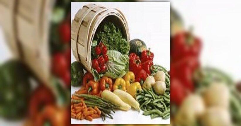 I benefici della paleo dieta
