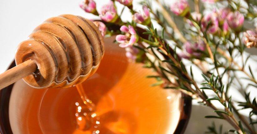 I benefici sulla salute del miele di Manuka