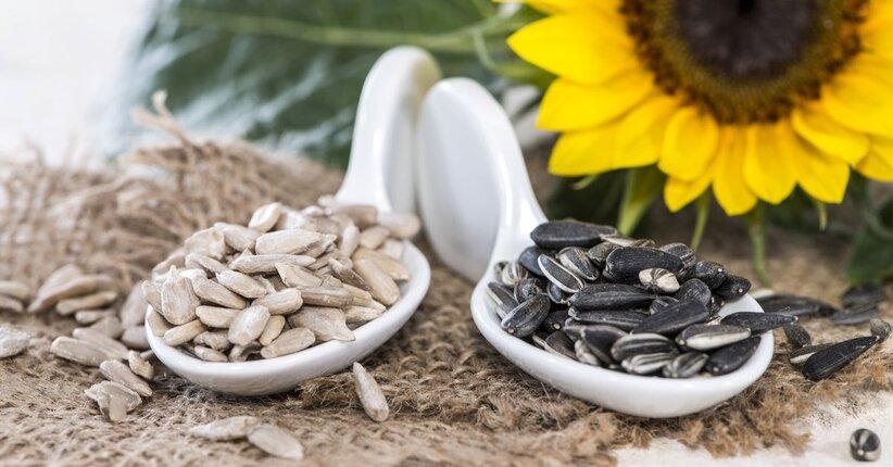 I semi di girasole: a cosa fanno bene?