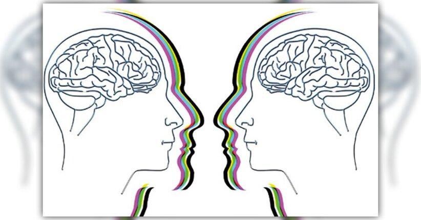 Il cervello: istruzioni per l'uso