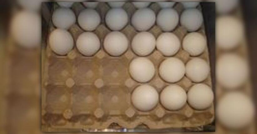 Il Commercio delle Uova Marce