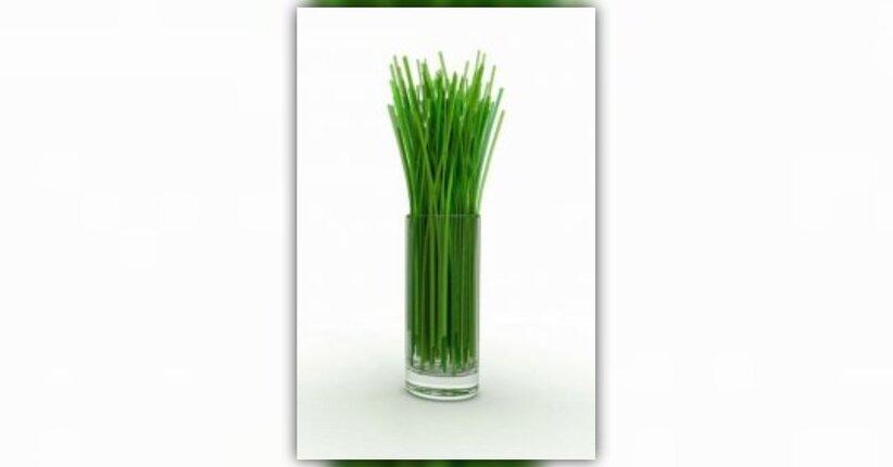 Il Lemongrass