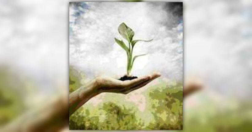 Il Naturopata: la nuova proposta di legge