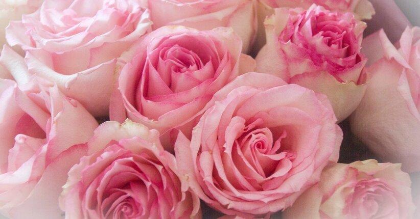 Il significato del colore rosa
