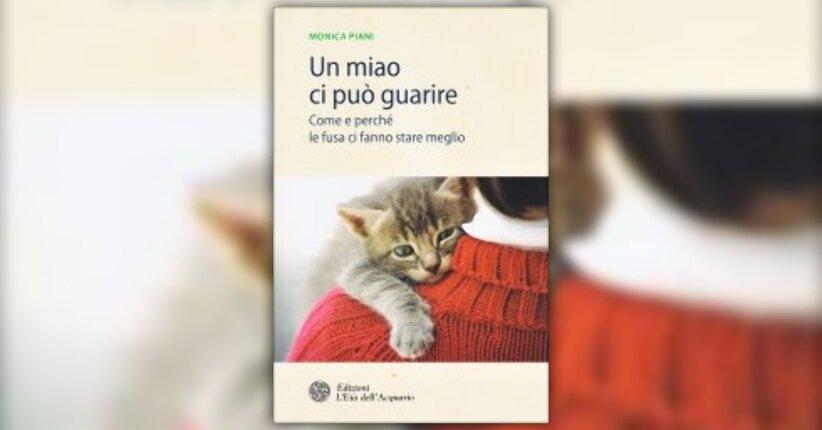 """Introduzione di """"Un Miao ci può Guarire"""" libro di Monica Piani"""
