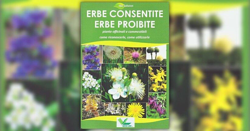Introduzione - Erbe Consentite Erbe Proibite - Libro di Ida Salusso