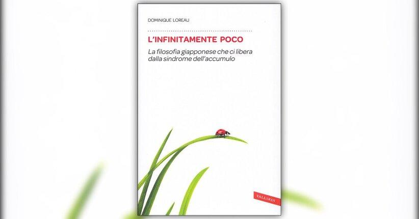 Introduzione - L'Infinitamente Poco - Libro di Dominique Loureau