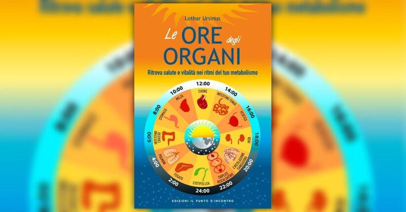 Introduzione - Le Ore degli Organi - Libro di Lothar Ursinus