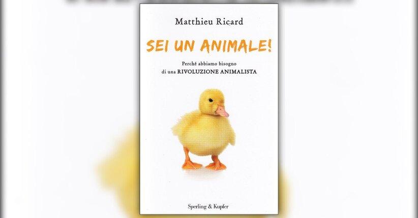 Introduzione - Sei un Animale! - Libro di Matthieu Ricard