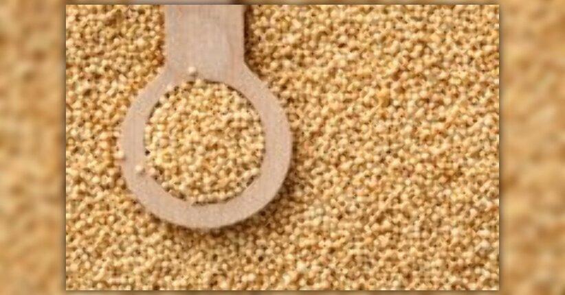 L'Amaranto: proprietà, valori nutrizionali, e come cucinarlo