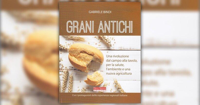"""La crisi del grano - Estratto dal libro """"Grani Antichi"""""""