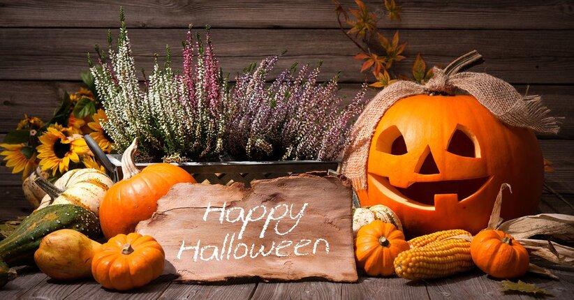 La festa: Halloween!