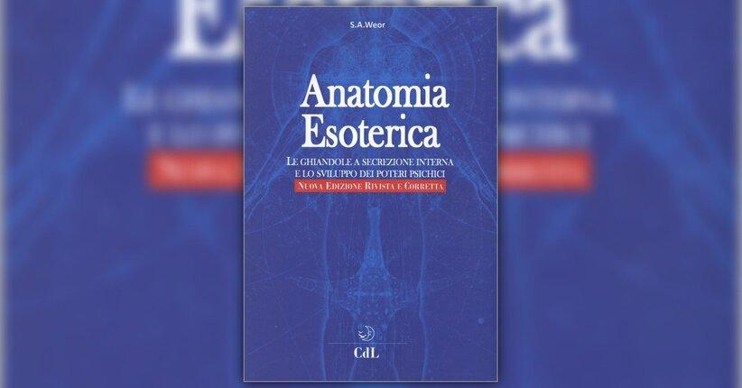 """La ghiandola pineale - Estratto dal libro """"Anatomia Esoterica"""""""