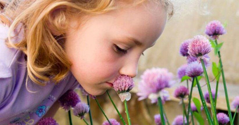 La persistenza di un profumo naturale
