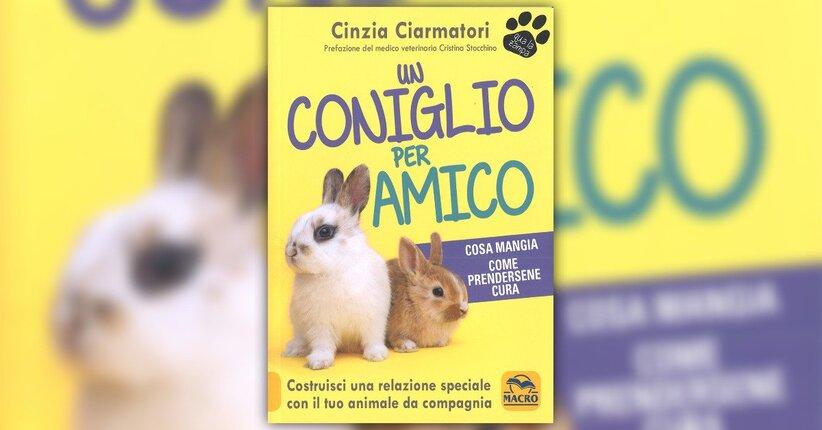 """La relazione con un coniglio - Estratto da """"Un Coniglio per Amico"""""""
