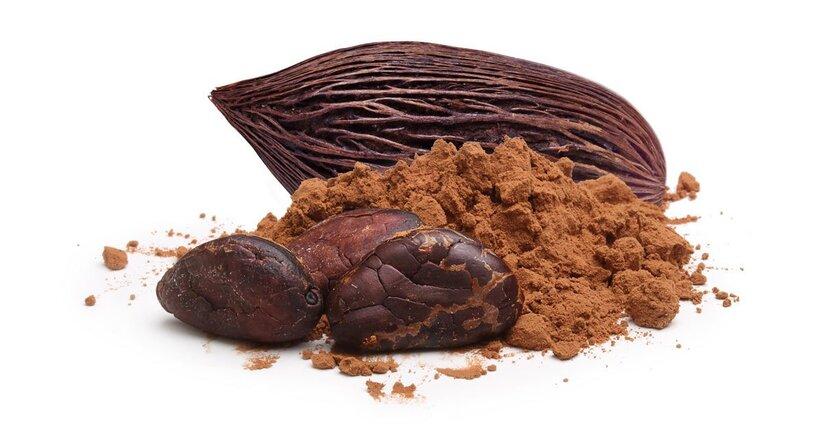 Le proprietà nutrizionali del cacao