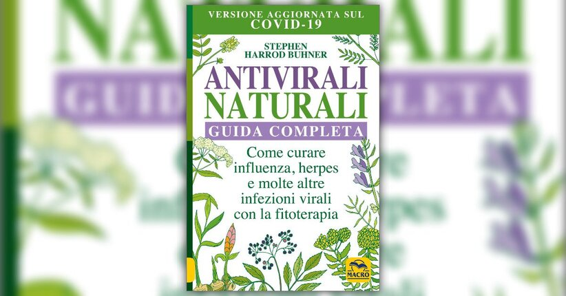 """Lo zenzero - Estratto da """"Antivirali Naturali"""""""