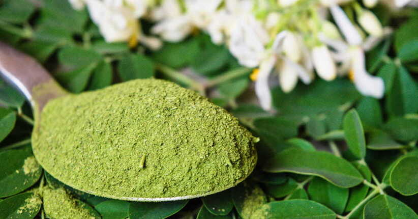 Moringa: il superfood dei miracoli