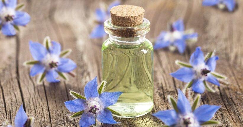 Olio di borragine per uso cosmetico