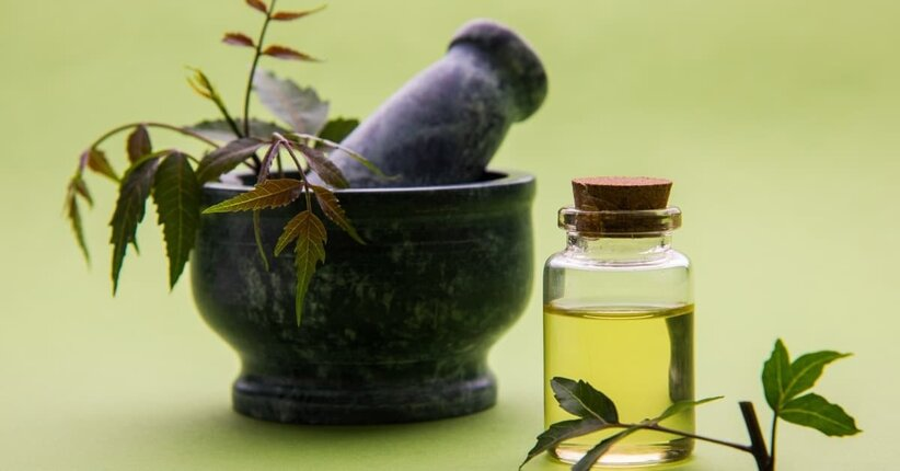 Olio di neem: l'anti-acaro e il repellente naturale per gli insetti in casa