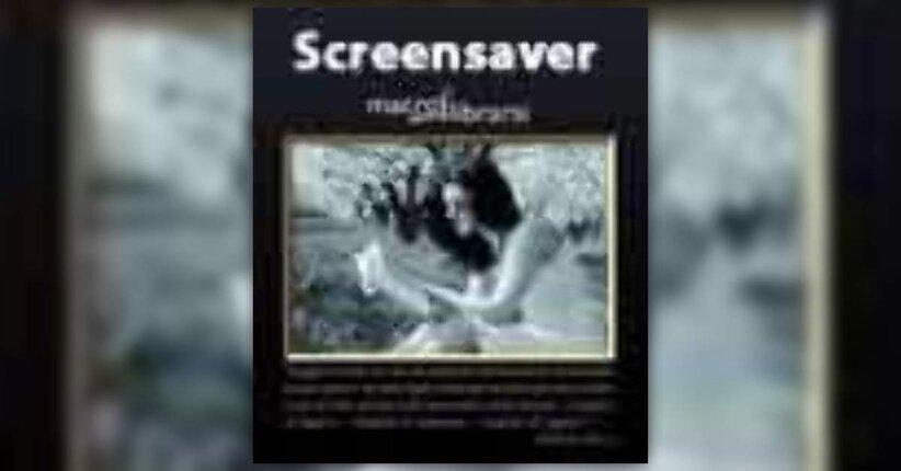 OMAGGIO - SCREENSAVER 2010 per tutti i visitatori di Macrolibrarsi!