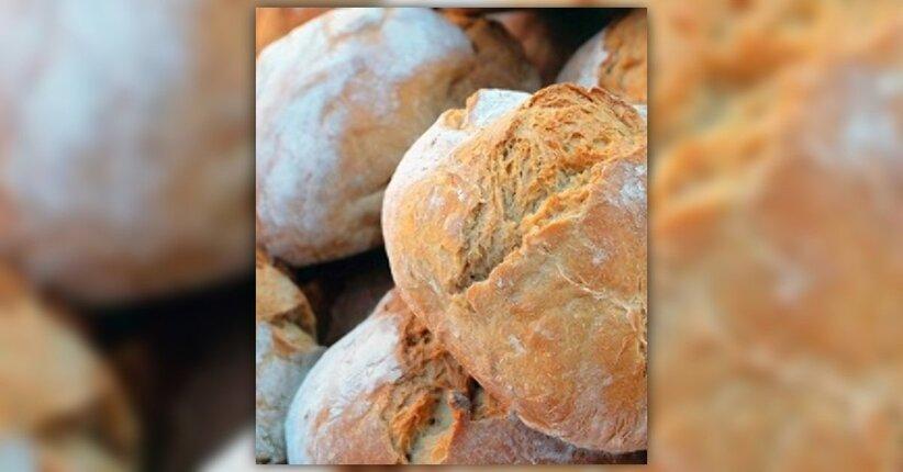 Pasta madre: cos'è e come usarla