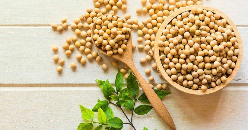 Perché mangiare prodotti a base di soia