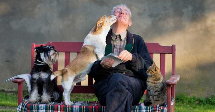 Pet therapy: perché il contatto con gli animali permette di guarire più in fretta
