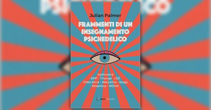 Prefazione - Frammenti di un Insegnamento Psichedelico - Libro di Julian Palmer