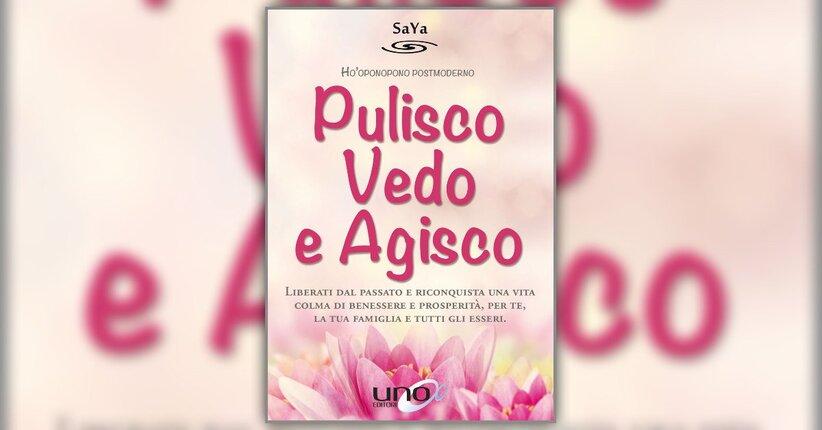 Premessa - Pulisco, Vedo e Agisco - Libro di SaYa
