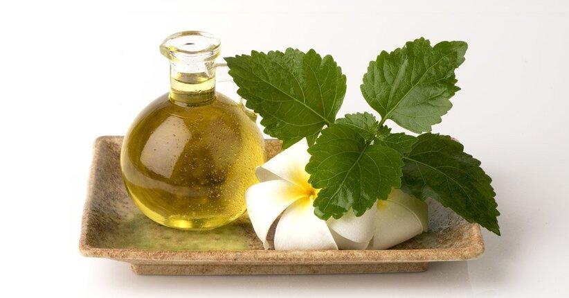 Profumo di Patchouli, l'antico sapore delle Indie