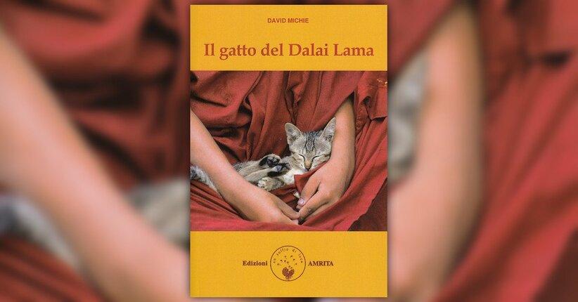 """Prologo del libro """"Il Gatto del Dalai Lama"""" di David Michie"""