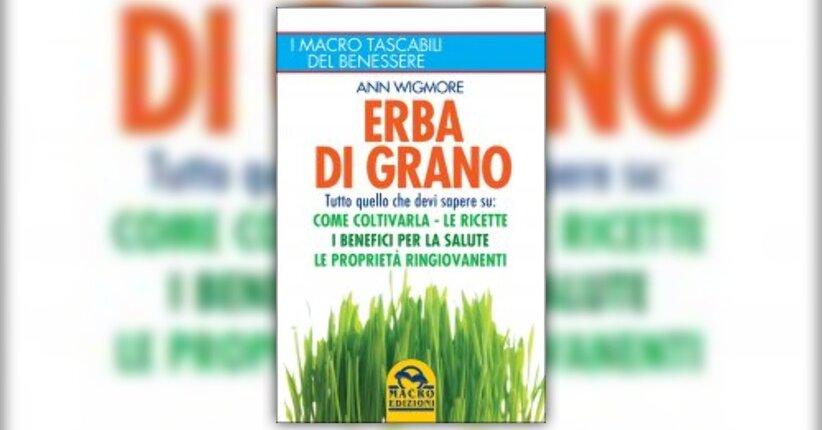 Prolungamento della vita e ringiovanimento con l'erba di grano