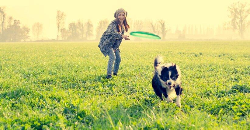 Quanto è importante far giocare il tuo cane?