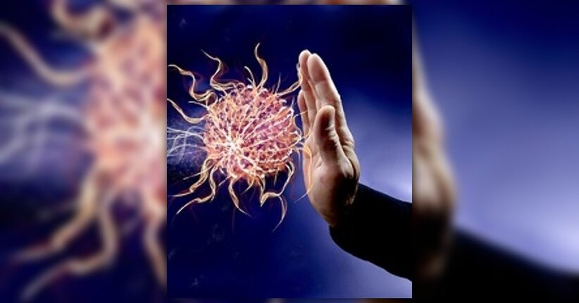 Rinforza il tuo sistema immunitario con la micoterapia