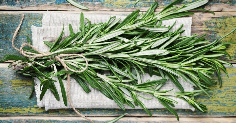 Rosmarino: un aroma per tutte le stagioni