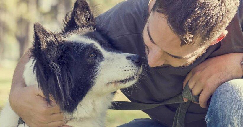 Salute del cane: i consigli naturali