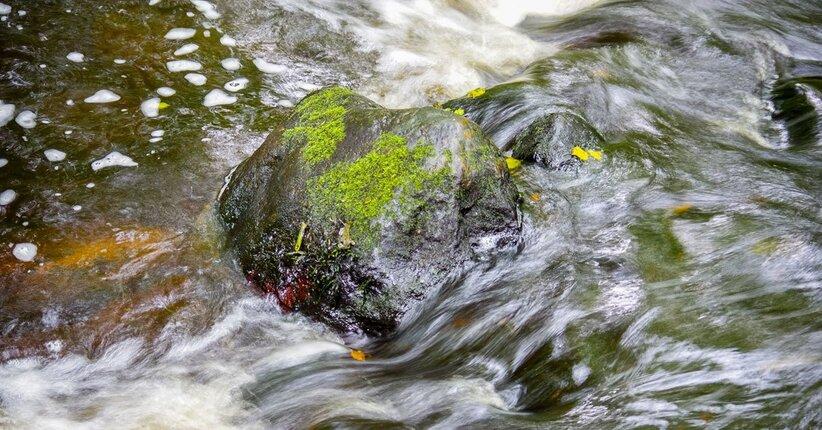 Sei troppo rigido? Prova Rock Water!